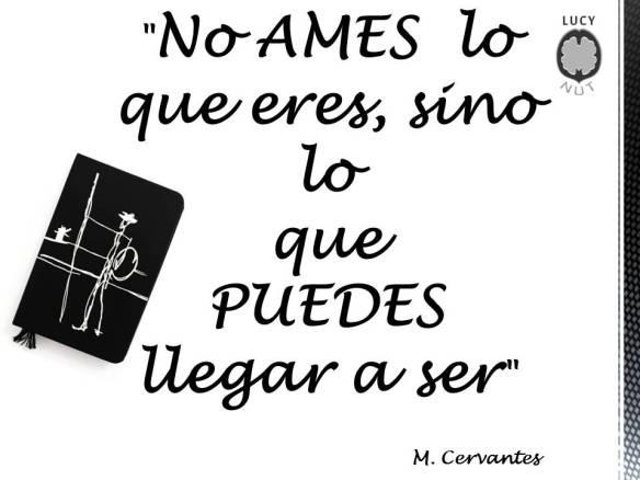 08-noames
